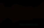 Logo Ts No Limit